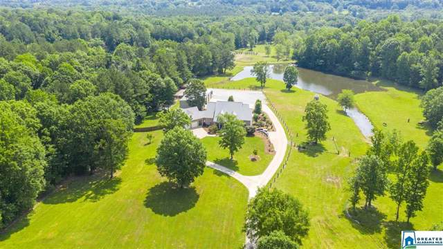 1720 Alston Farm Rd, Columbiana, AL 35051 (MLS #872105) :: LocAL Realty