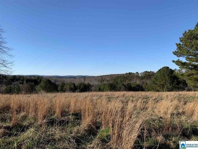 00 Elmer Dempsey Rd #1, Oneonta, AL 35121 (MLS #872243) :: Bentley Drozdowicz Group