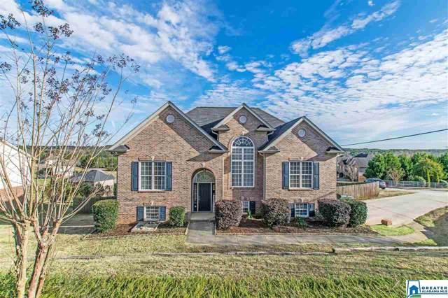 425 Woodland Ridge Rd, Odenville, AL 35120 (MLS #872313) :: Josh Vernon Group