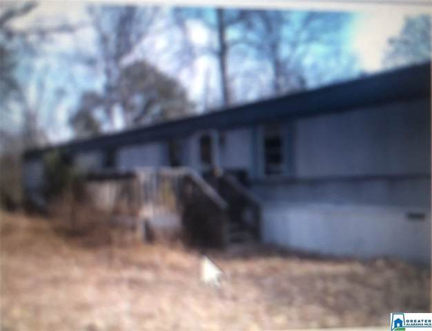 98 Lynch Lake Rd, Odenville, AL 35120 (MLS #872335) :: LocAL Realty
