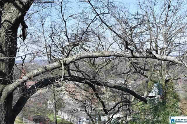 1144 Mill Creek Rd #728, Warrior, AL 35180 (MLS #872374) :: Sargent McDonald Team