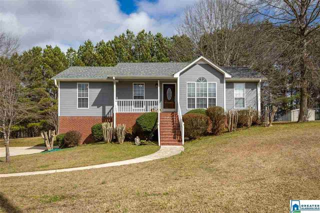 6489 Water Works Rd, Mount Olive, AL 35117 (MLS #873151) :: LocAL Realty
