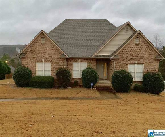 533 Woodland Ridge Rd, Odenville, AL 35120 (MLS #873264) :: LocAL Realty
