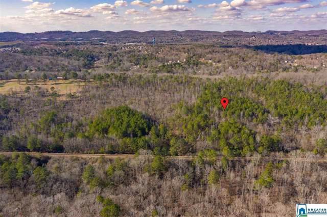 6534 Mountain Ridge Rd #0, Trussville, AL 35173 (MLS #873287) :: Josh Vernon Group