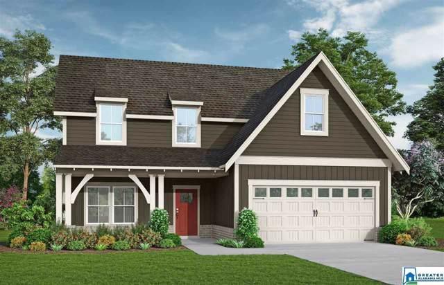 50 Macdonald Cove, Springville, AL 35146 (MLS #873387) :: Josh Vernon Group