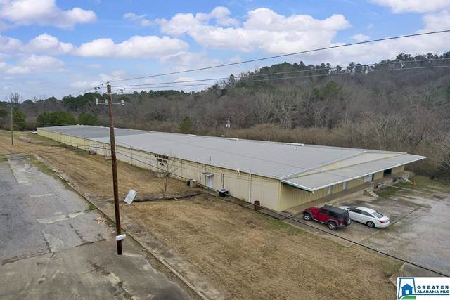 2707 Horsecreek Blvd, Dora, AL 35062 (MLS #873528) :: Sargent McDonald Team