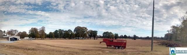 1472 Glaze Ferry Rd 5 Parcels, Harpersville, AL 35078 (MLS #873616) :: Josh Vernon Group
