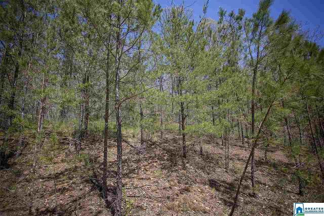 00 Pine Heart Dr #0, Remlap, AL 35133 (MLS #873965) :: Gusty Gulas Group