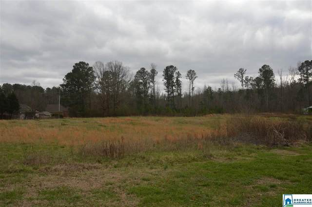 1405 Sanie Rd #0, Odenville, AL 35120 (MLS #874028) :: Josh Vernon Group
