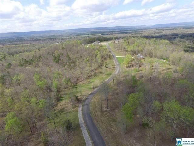 Stone Ridge Dr Lot 3, Springville, AL 35146 (MLS #874361) :: Josh Vernon Group