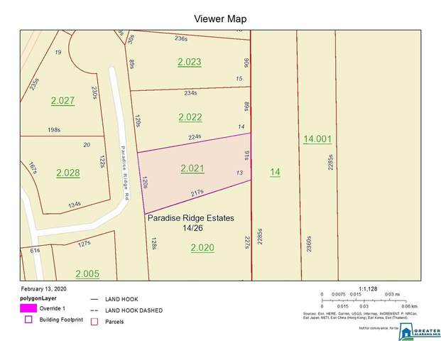 Lot 13 Paradise Ridge Rd #13, Leesburg, AL 35983 (MLS #874494) :: Howard Whatley