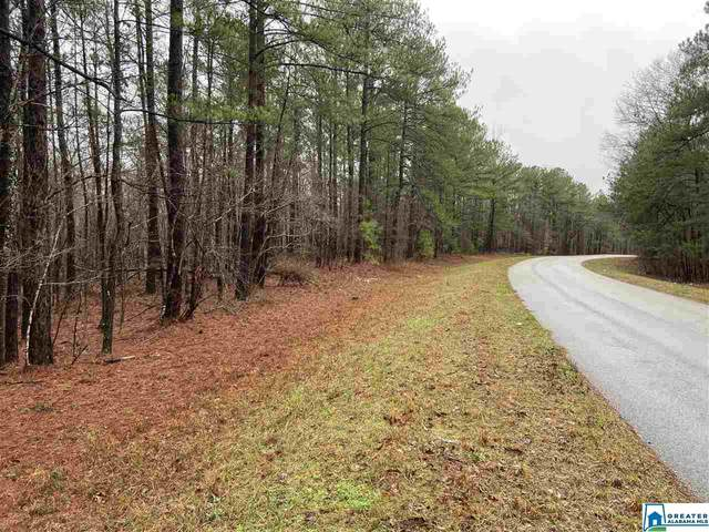 5576 Co Rd 97 #1, Clanton, AL 35046 (MLS #874597) :: LocAL Realty