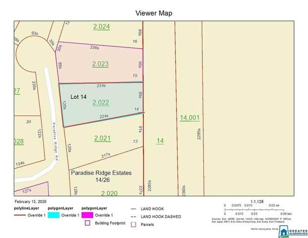 Lot 14 Paradise Ridge Rd #14, Leesburg, AL 35983 (MLS #874841) :: Howard Whatley