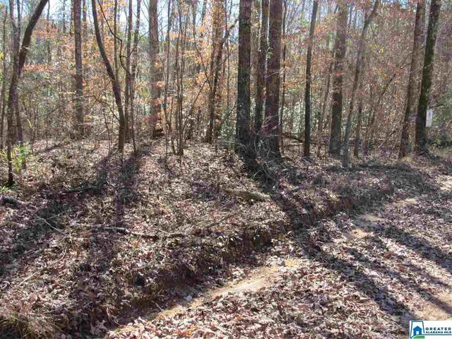 0 Co Rd 354 Tract 1-A, Clanton, AL 35045 (MLS #874859) :: Josh Vernon Group
