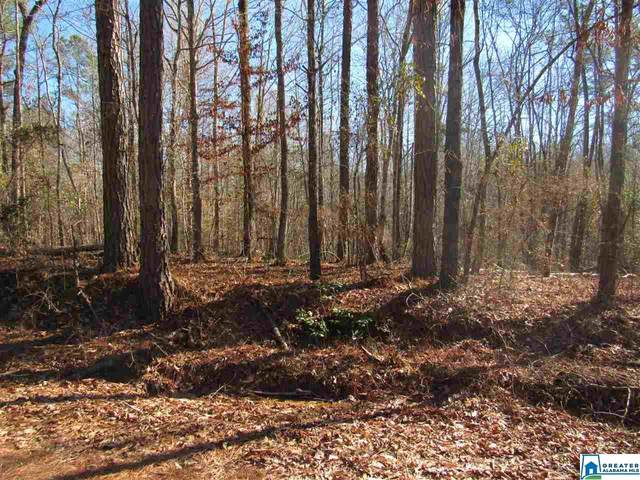 0 Co Rd 354 Tract 1, Clanton, AL 35045 (MLS #874860) :: Josh Vernon Group