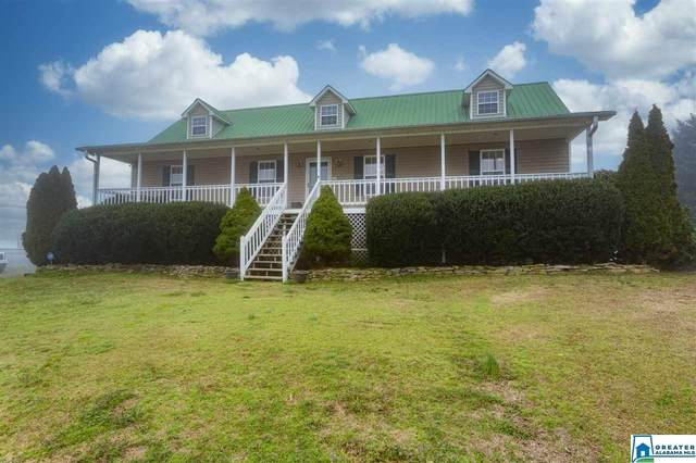 1131 Jones Chapel Loop Rd, Springville, AL 35146 (MLS #874896) :: Josh Vernon Group