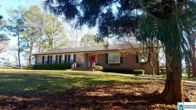 209 Auburn Rd, Indian Springs Village, AL 35124 (MLS #874920) :: LIST Birmingham