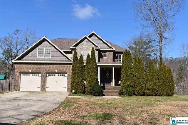315 Valley Trl, Warrior, AL 35180 (MLS #875344) :: Josh Vernon Group