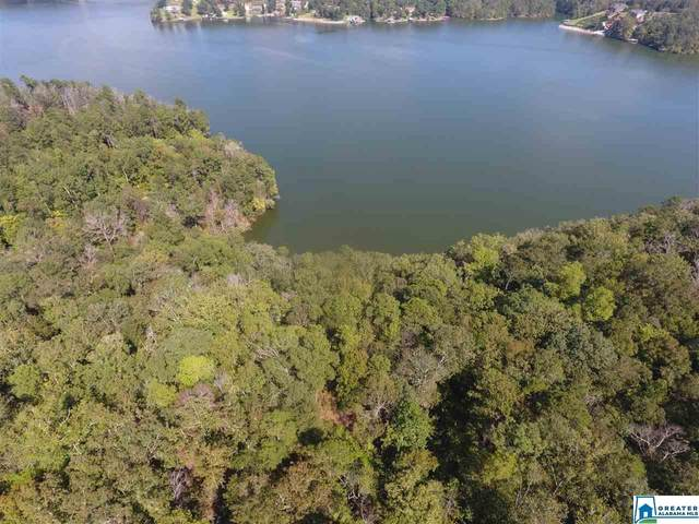 0 Will Black Hollow Rd #0, Ragland, AL 35131 (MLS #875369) :: Gusty Gulas Group