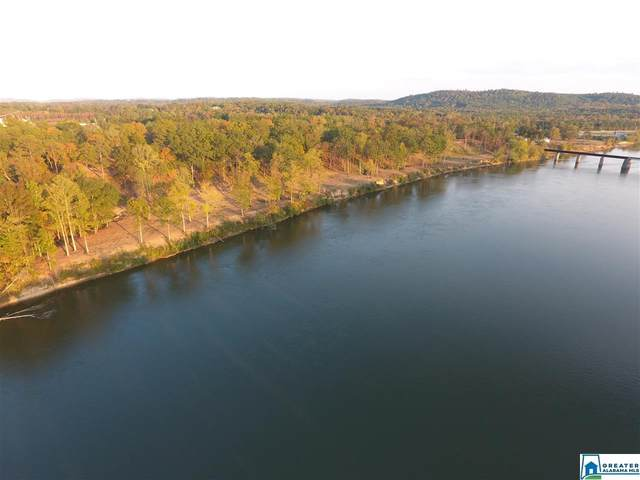 0 Hwy 77 #0, Ohatchee, AL 36271 (MLS #875371) :: Gusty Gulas Group