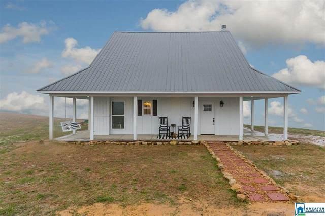 1085 Jones Chapel Loop Rd, Springville, AL 35146 (MLS #875838) :: Josh Vernon Group