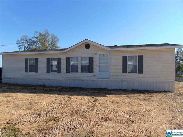 13489 Co Rd 16, Maplesville, AL 36750 (MLS #876050) :: LIST Birmingham
