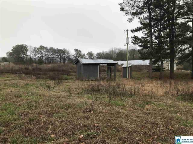 860 Co Rd 1240 10 Acres, Vinemont, AL 35179 (MLS #876644) :: Josh Vernon Group