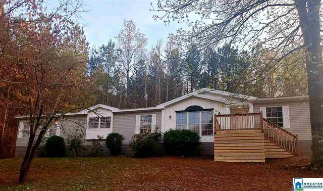 20 Cliff Springs Rd, Springville, AL 35146 (MLS #878139) :: Josh Vernon Group