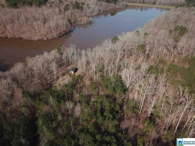 0 Co Rd 238 N/A, Roanoke, AL 36274 (MLS #878235) :: Howard Whatley