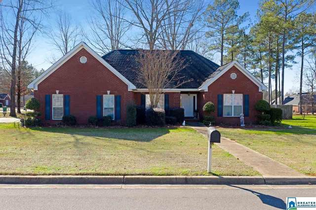 16693 Laney Ln, Vance, AL 35490 (MLS #878967) :: Sargent McDonald Team