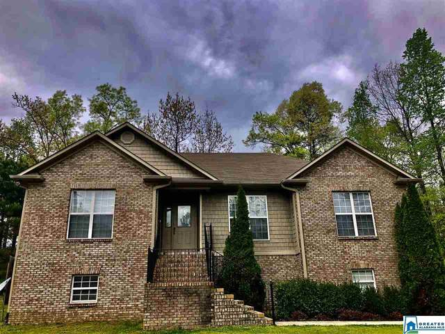 100 Hunters Crossing Rd, Odenville, AL 35120 (MLS #879146) :: Gusty Gulas Group