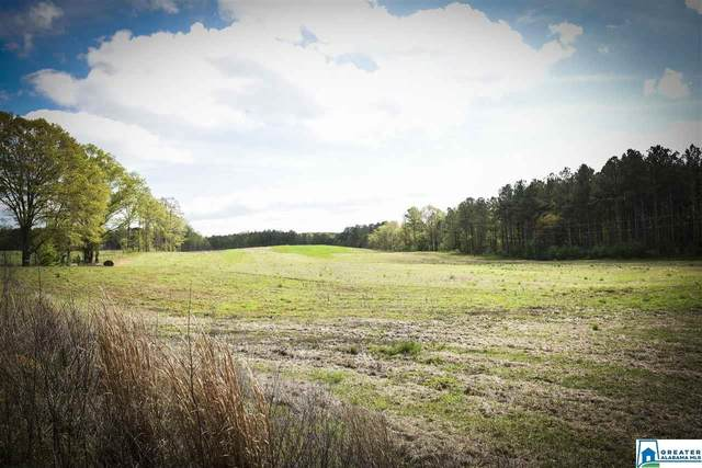 461 Co Rd 249 #0, Woodland, AL 36280 (MLS #879148) :: Gusty Gulas Group