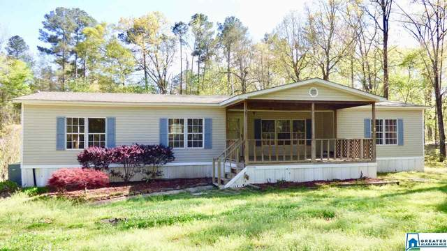 8119 Old Hwy 280, Chelsea, AL 35043 (MLS #879218) :: LocAL Realty
