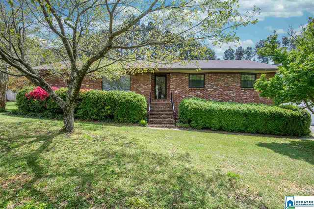 1154 Rock Creek Rd, Concord, AL 35023 (MLS #879253) :: Gusty Gulas Group