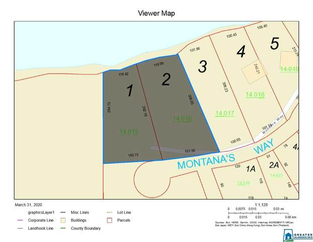 Montanas Way 1 And 2, Wedowee, AL 36278 (MLS #879463) :: Gusty Gulas Group