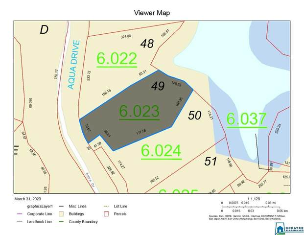 00 Aqua Dr #49, Wedowee, AL 36278 (MLS #879467) :: Gusty Gulas Group