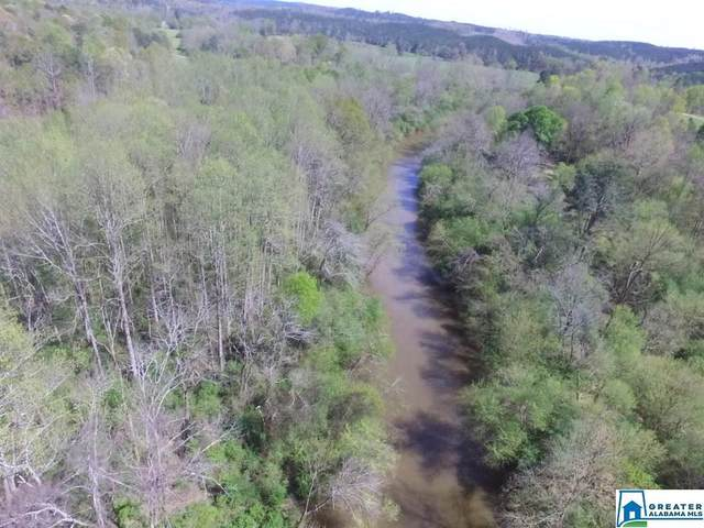0 Co Rd 60 #1, Heflin, AL 36264 (MLS #879473) :: Gusty Gulas Group