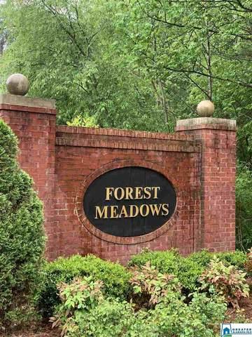 2099 Forest Meadows Cir, Birmingham, AL 35242 (MLS #879868) :: Gusty Gulas Group