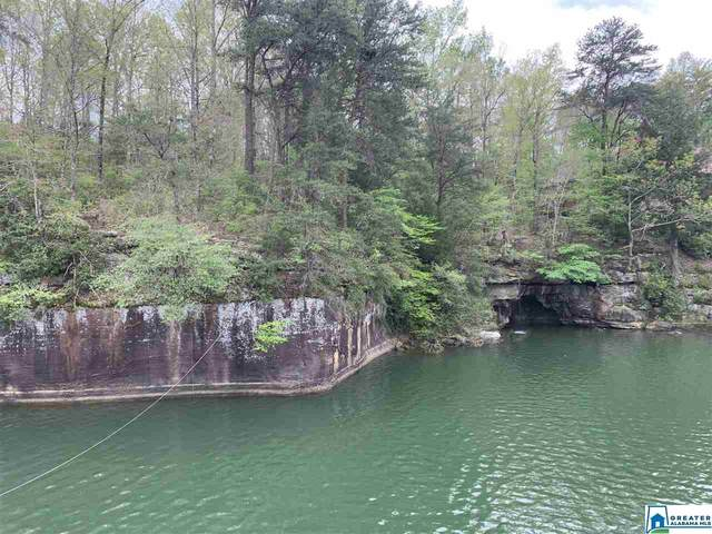 0 Sipsey Pines Rd #132, Arley, AL 35541 (MLS #879936) :: Gusty Gulas Group