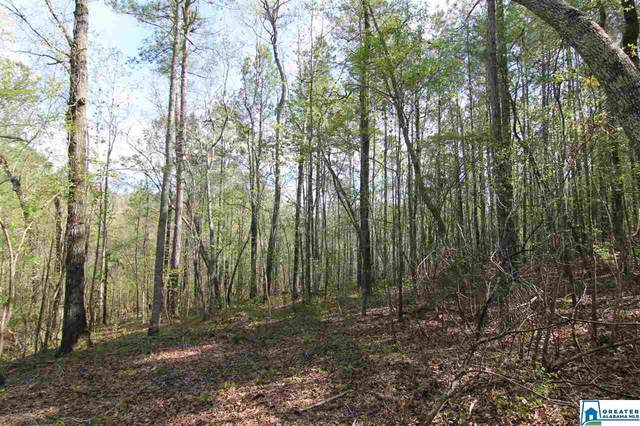 16615 Hwy 22 50 Ac, DAVISTON, AL 36256 (MLS #881127) :: JWRE Powered by JPAR Coast & County