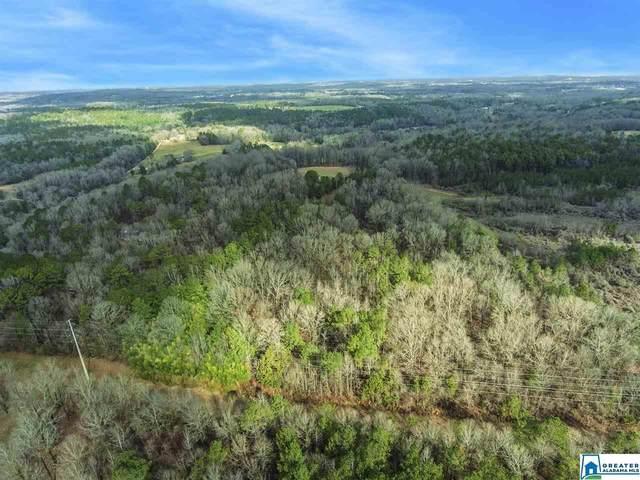 0 Spring Creek Rd 30 AC, Montevallo, AL 35115 (MLS #882164) :: LocAL Realty