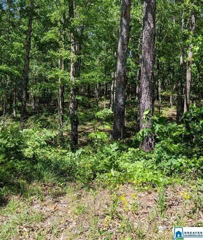 5 Cedar Grove Rd Primary Lot 5, Wilsonville, AL 35186 (MLS #882452) :: Josh Vernon Group