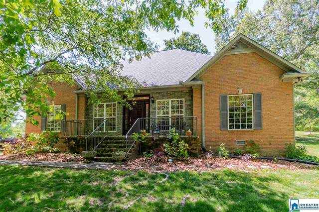 130 Fire Hall Dr, Ashville, AL 35953 (MLS #882857) :: Bentley Drozdowicz Group