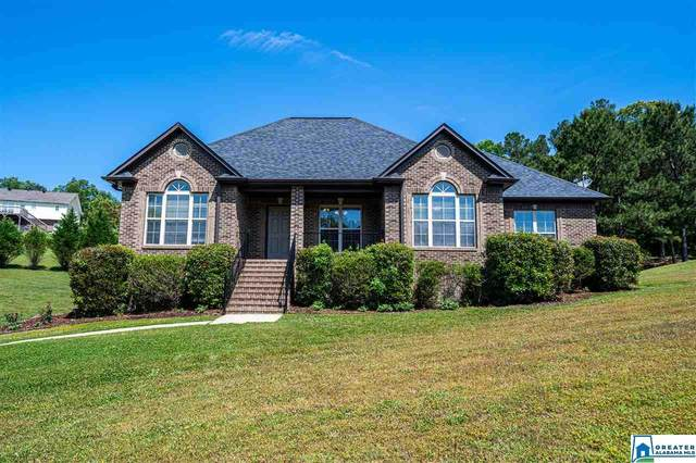 1009 Allison Ct, Odenville, AL 35120 (MLS #883422) :: Josh Vernon Group
