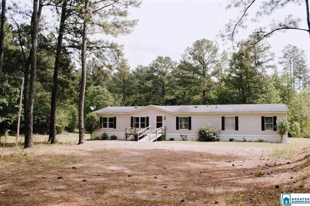 65 Mountainview Rd, Wellington, AL 36279 (MLS #883430) :: Gusty Gulas Group