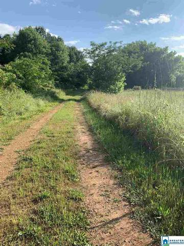 Louina Rd 81 Acres, Roanoke, AL 36274 (MLS #883773) :: Josh Vernon Group