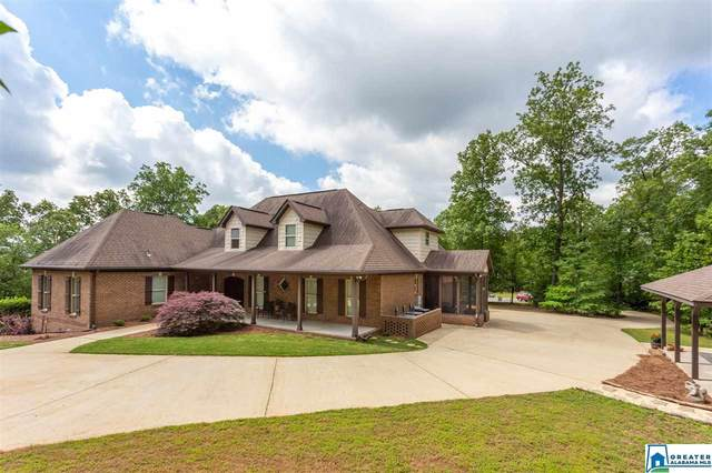 796 Lake Country Dr, Odenville, AL 35120 (MLS #883823) :: Sargent McDonald Team
