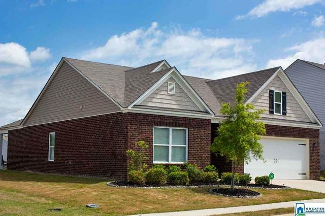6601 Newbridge Dr, Bessemer, AL 35022 (MLS #883916) :: Gusty Gulas Group