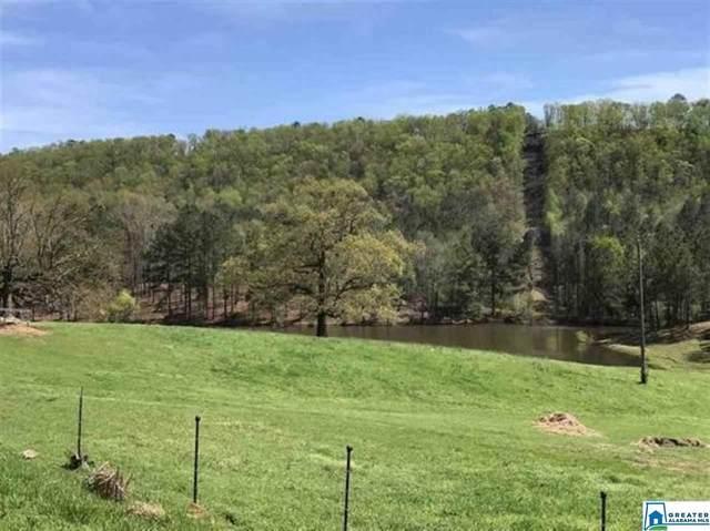 7.85 Acres War Eagle Dr #2, Bessemer, AL 35022 (MLS #884000) :: LIST Birmingham