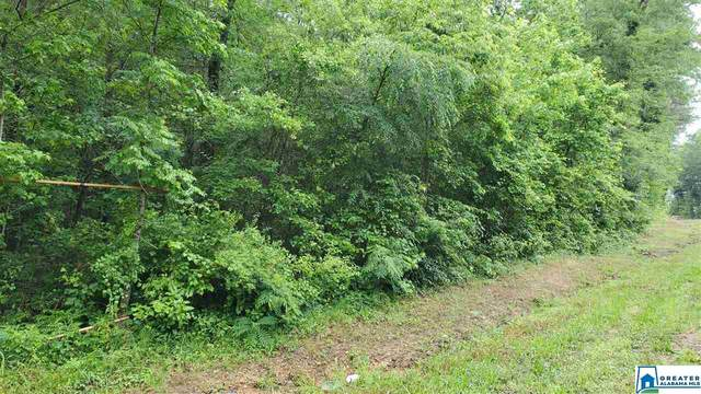 00 Hwy 26 #0, Columbiana, AL 35051 (MLS #884321) :: Josh Vernon Group